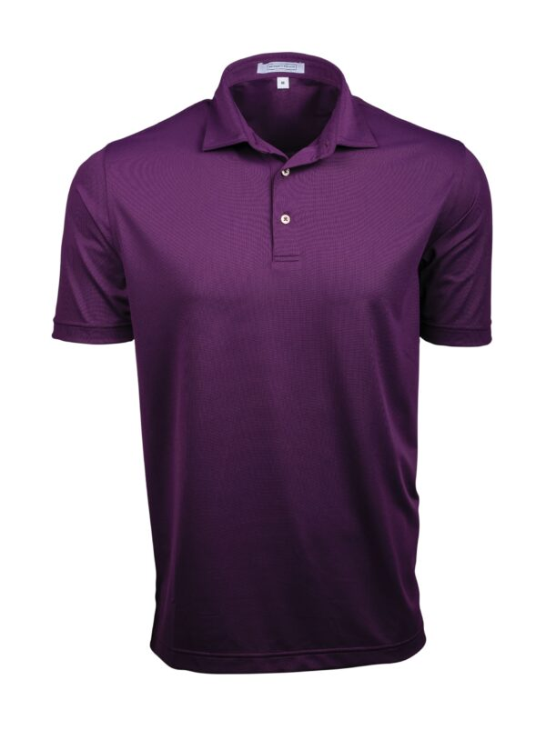 Fenix XCell PE Grape Polo Shirt for men